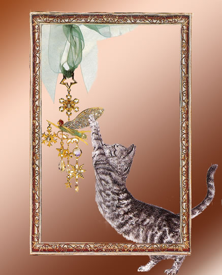 D Cat Pictures With Frame